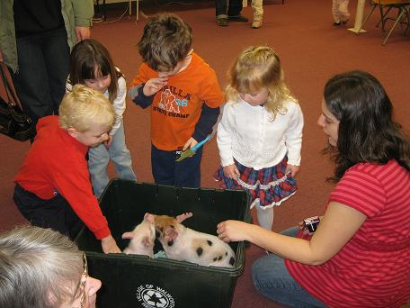 Pigs visit the library!